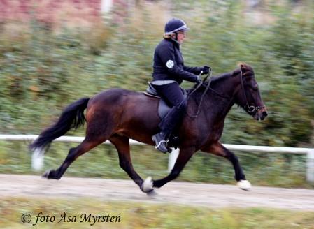 Femgång på Krafturs KM 2008 5, 05 blev vår finalpoäng