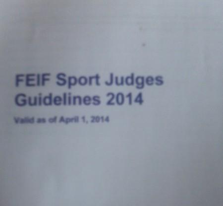 Judges Guidelines